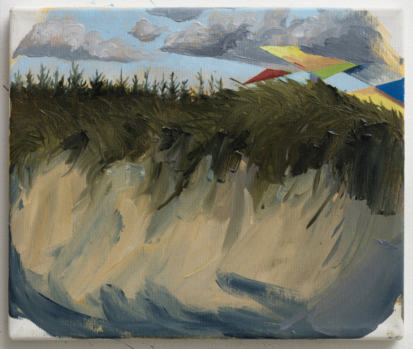 Picturesque part of the dunes at Svinkløv Badehotel, DK, 2015, Oil on canvas, 25 x 30 cm, private collection